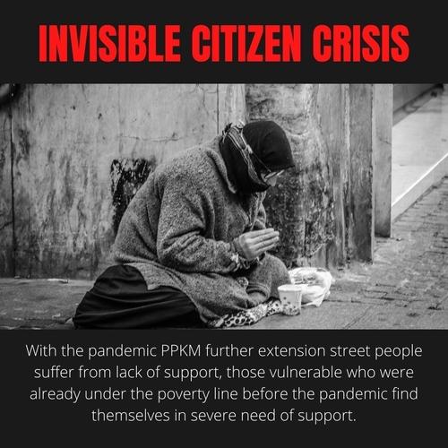 invisible citizens crisis